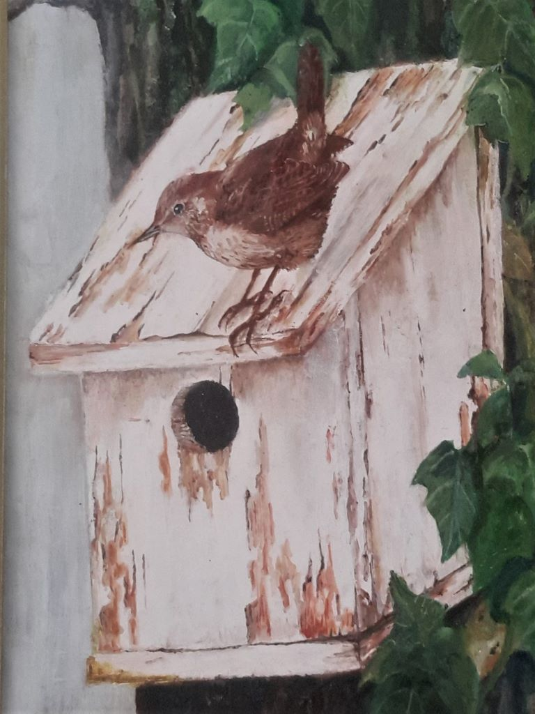 Bird on birdbox by Ron Wyatt