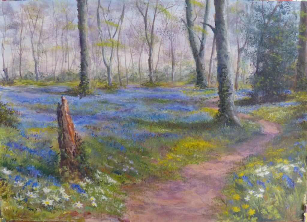 Bluebell Wood by B Humphreys