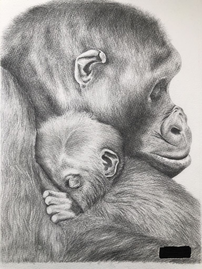 Cuddle by Marguerite Cooper