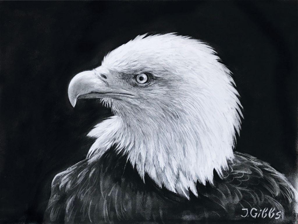 Eagle 2 by Jenny Gibbs