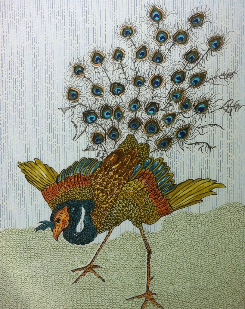 Peacock by Tina Shaw Medium Ink