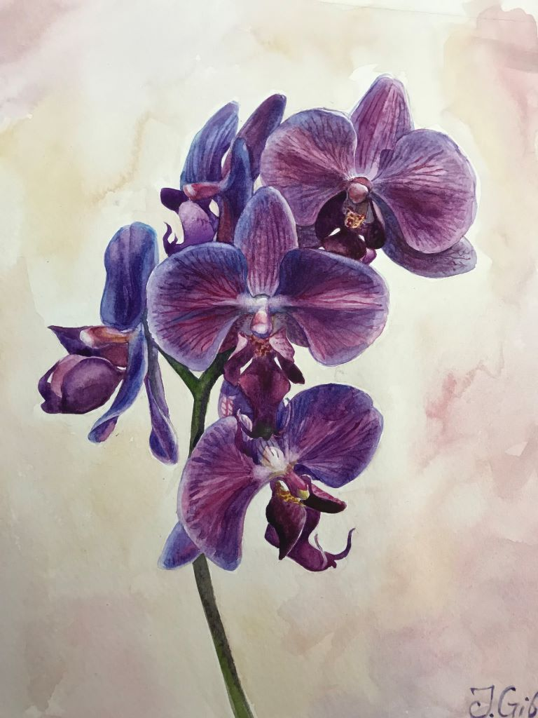 Purple orchids by Jenny Gibbs