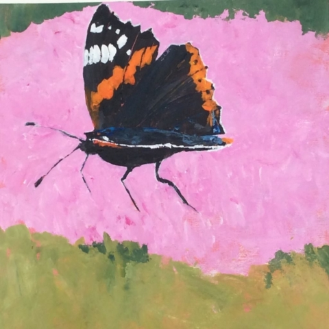 Red Admiral by Mark Davies
