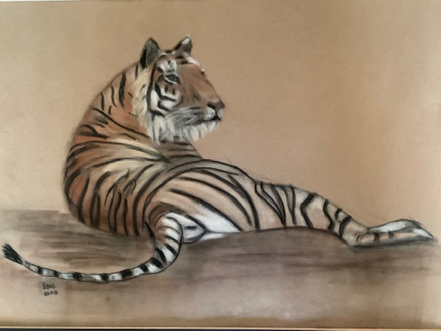 Resting Tiger by Barbara Wright
