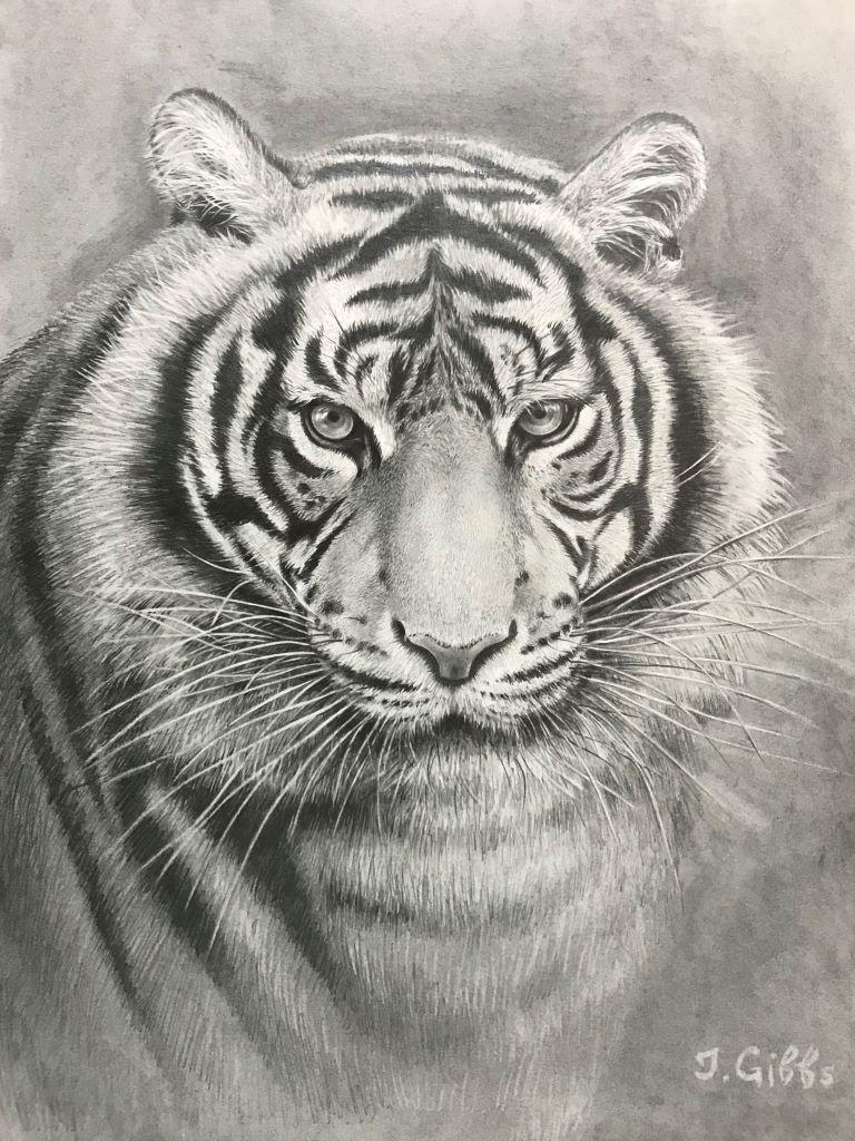 Tiger 1 by Jenny Gibbs