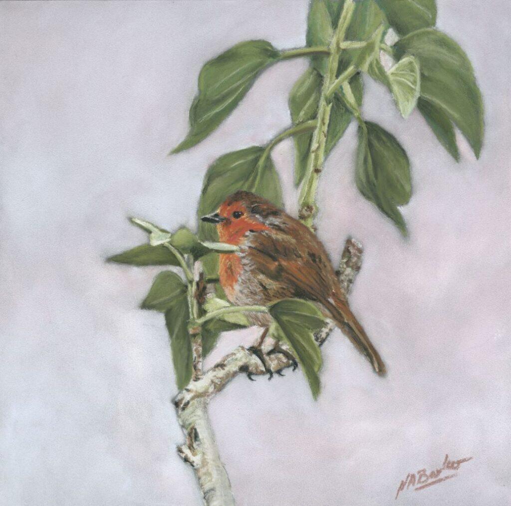 Titchfield Robin by Nick Barker