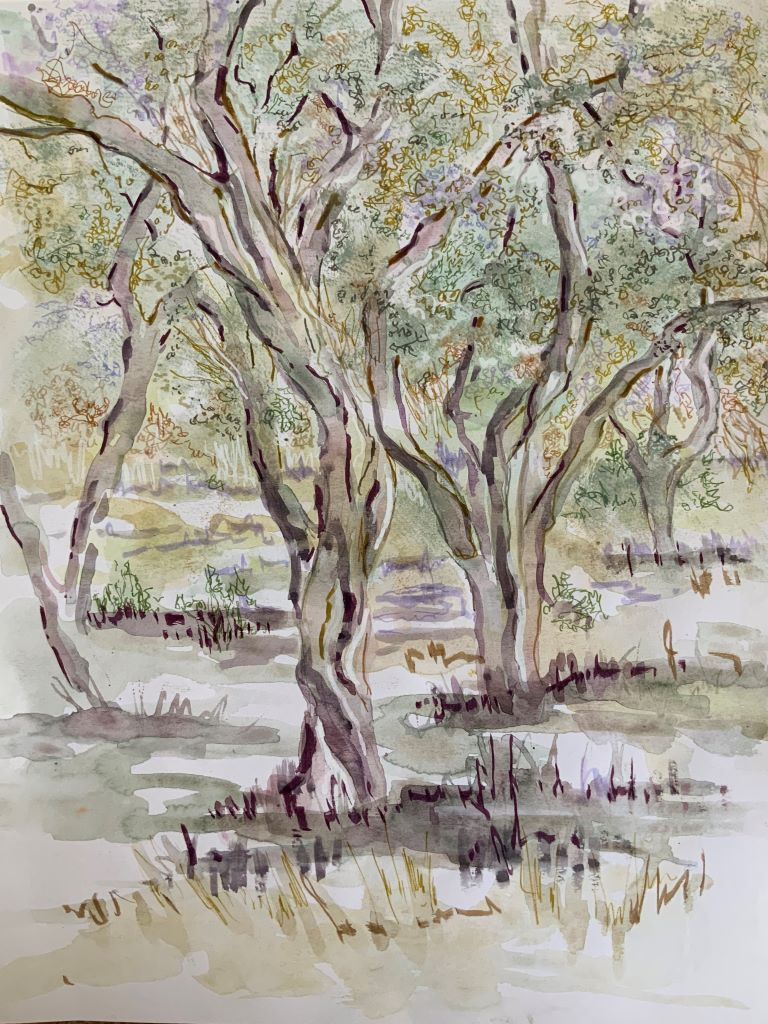 Trees 6 by Sue Burgess