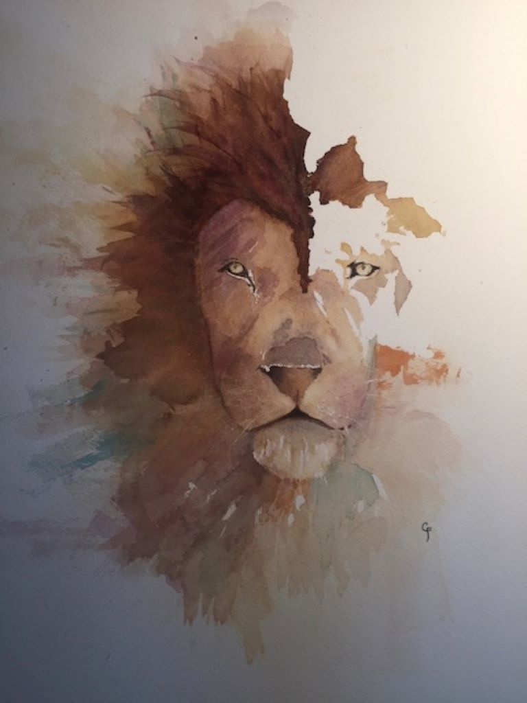 Lion by Chris Farrell